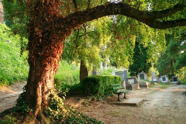 cimitirul evanghelic