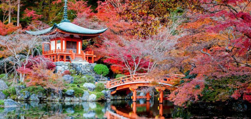 Oferte bune pentru Japonia din Roma: Tokyo 378 EUR, Osaka 381 EUR, Fukuoka 365 EUR