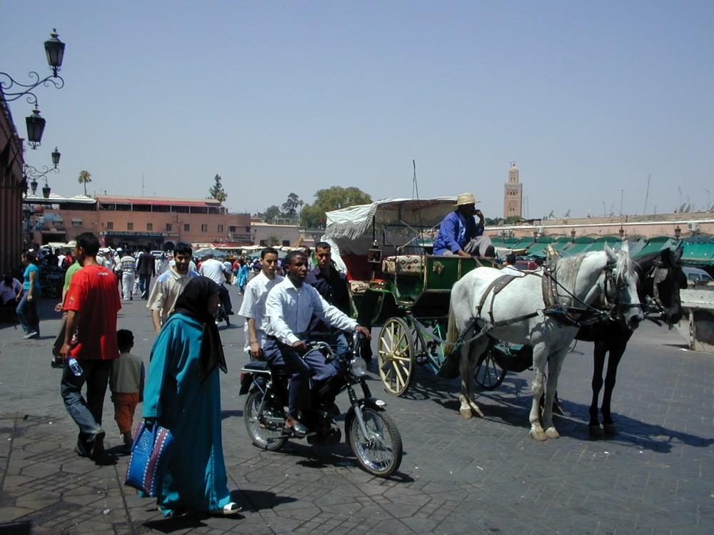 transport-maroc
