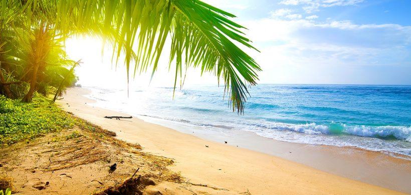 Vacanta in Sri Lanka, 448 euro! (zbor, cazare 9 nopti la resort, mic-dejun inclus)