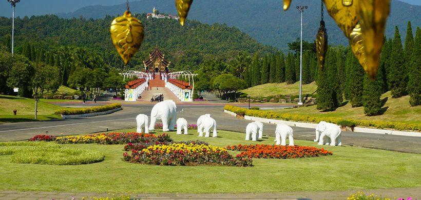 10 lucruri pe care trebuie să le știi înainte să mergi în Chiang Mai, Thailanda!