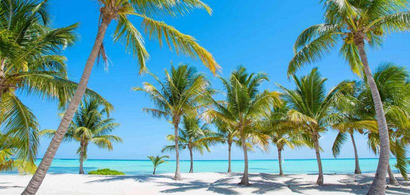 Zboruri catre Punta Cana, 564 euro dus-intors!
